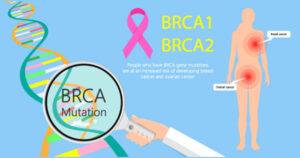BRCA 1 & 2 picture